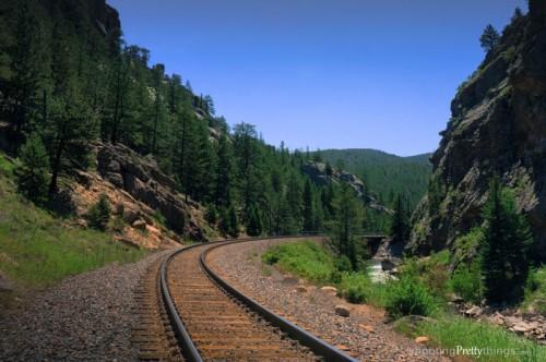 SPT_TrainTracks